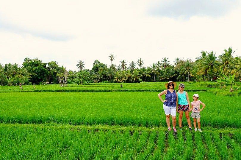 Ubud-Rice-Field-Walk
